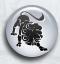 Daghoroscoop 6 april Leeuw door waarzegsters